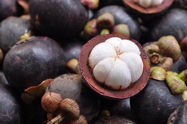 kandungan buah manggis