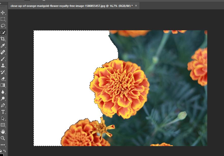 hapus background di photoshop
