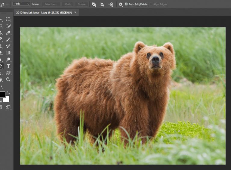 Cara Crop Foto di Photoshop dengan Berbagai Bentuk